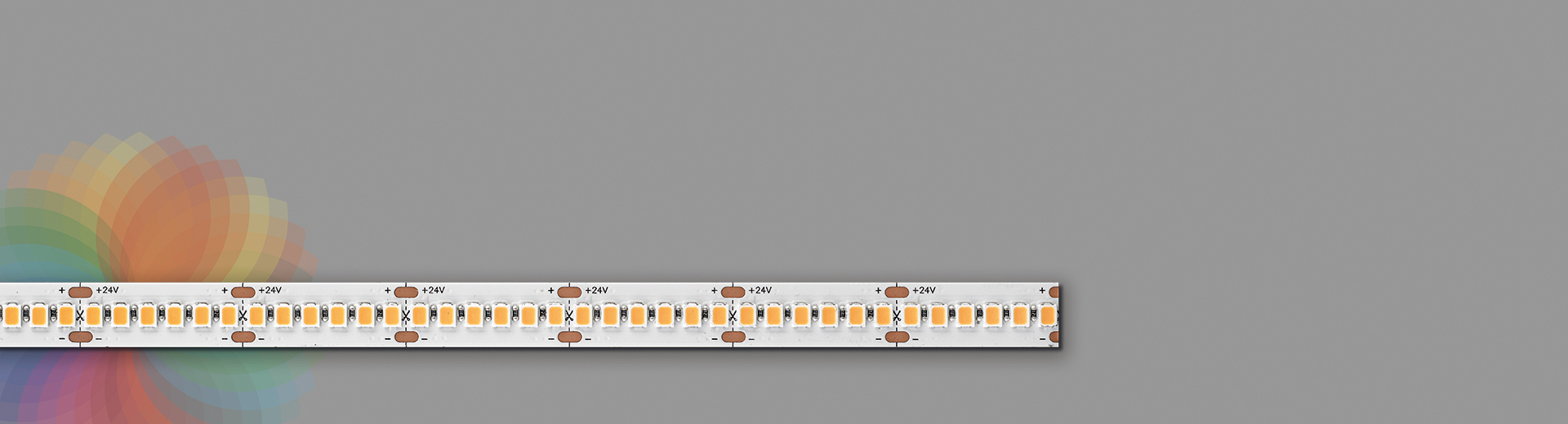 DuraLamp_DT Full Spectrum_Banner (1)